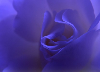 Picture no: 9565432 Blue Dream Created by: Renate Knapp