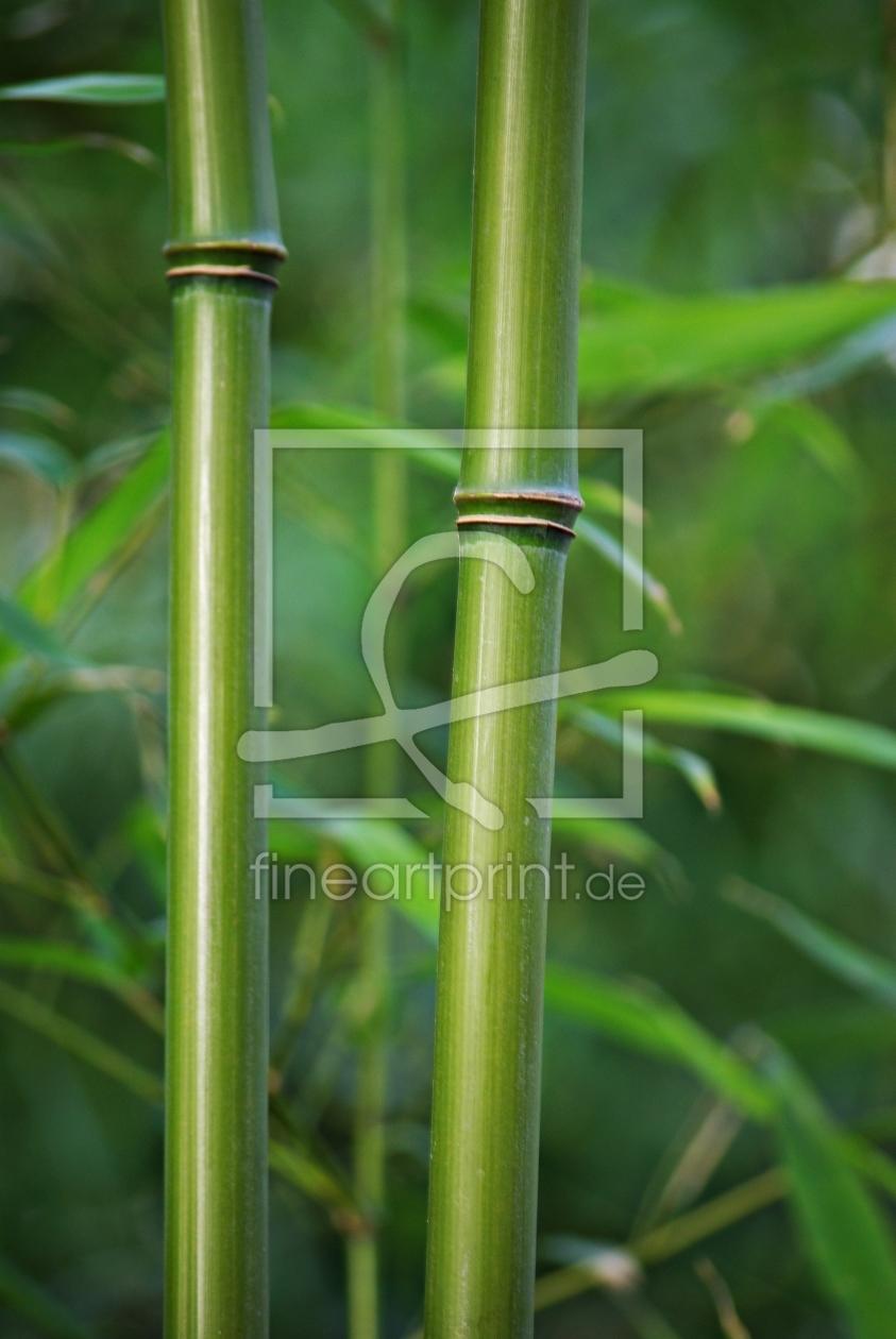 bambus als k chenspiegel von atteloi erh ltlich bei fine. Black Bedroom Furniture Sets. Home Design Ideas