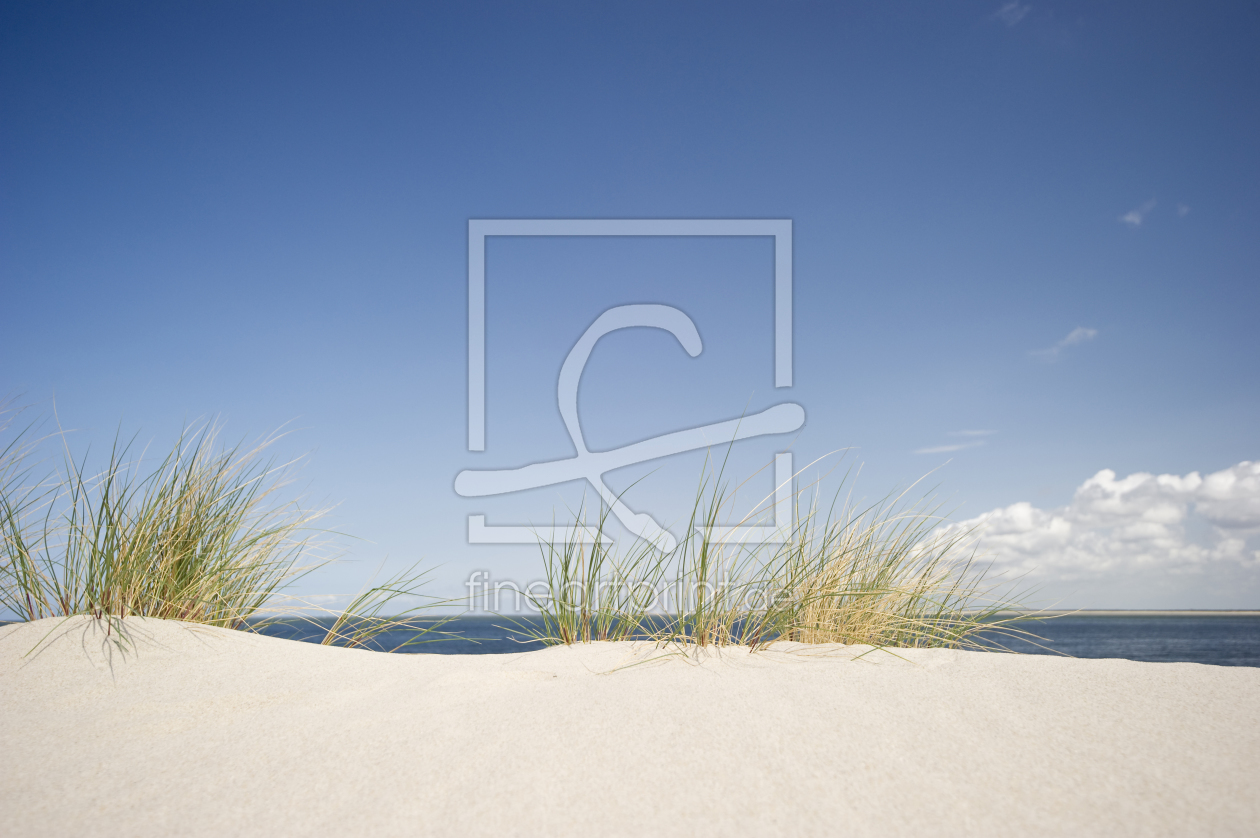http://www.fineartprint.de/dynimage/bigpreview/0010000000/10105000/10105254.jpg