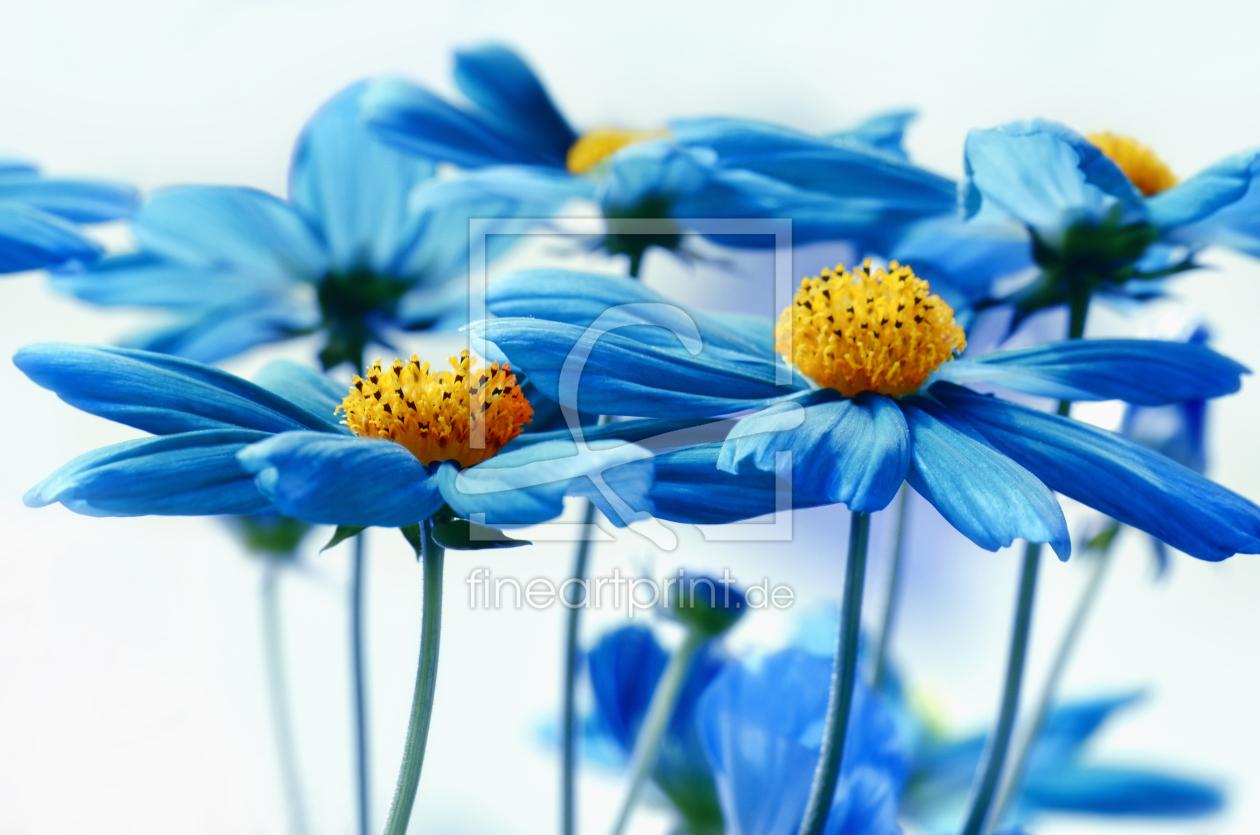 Blau als Teppich von Atteloi erhältlich bei Fine Art Print