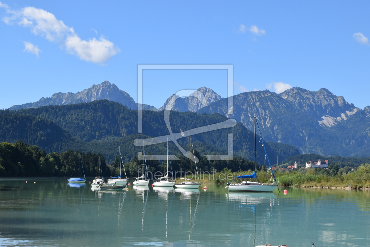bergpanorama am forggensee als k chenspiegel von. Black Bedroom Furniture Sets. Home Design Ideas