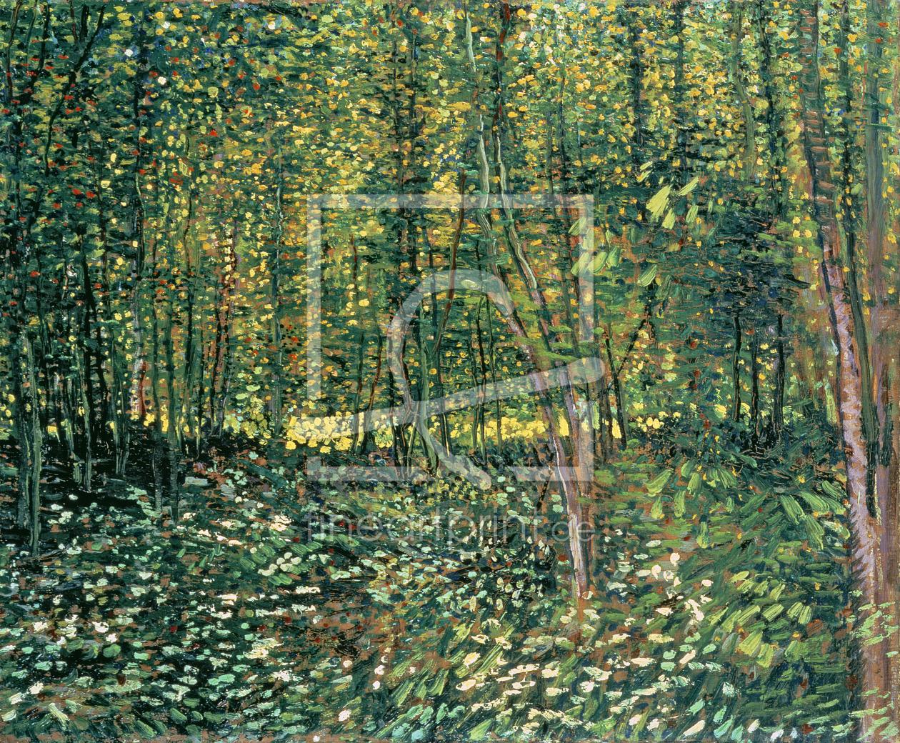 http://www.fineartprint.de/dynimage/bigpreview/0031000000/31001000/31001372.jpg