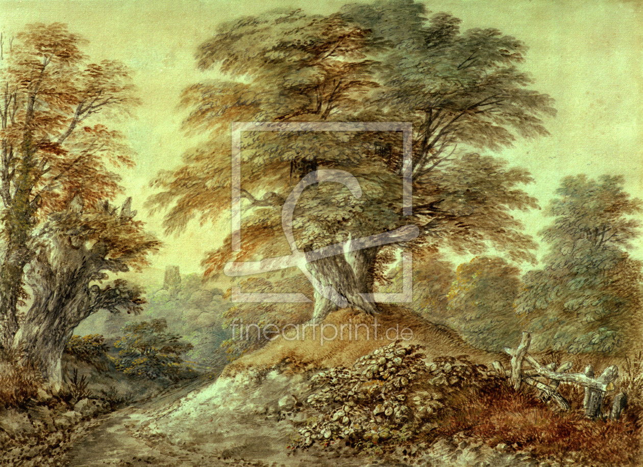 Bild-Nr.: 30000682 Th.Gainsborough, Study of Beech Trees... erstellt von Gainsborough, Thomas