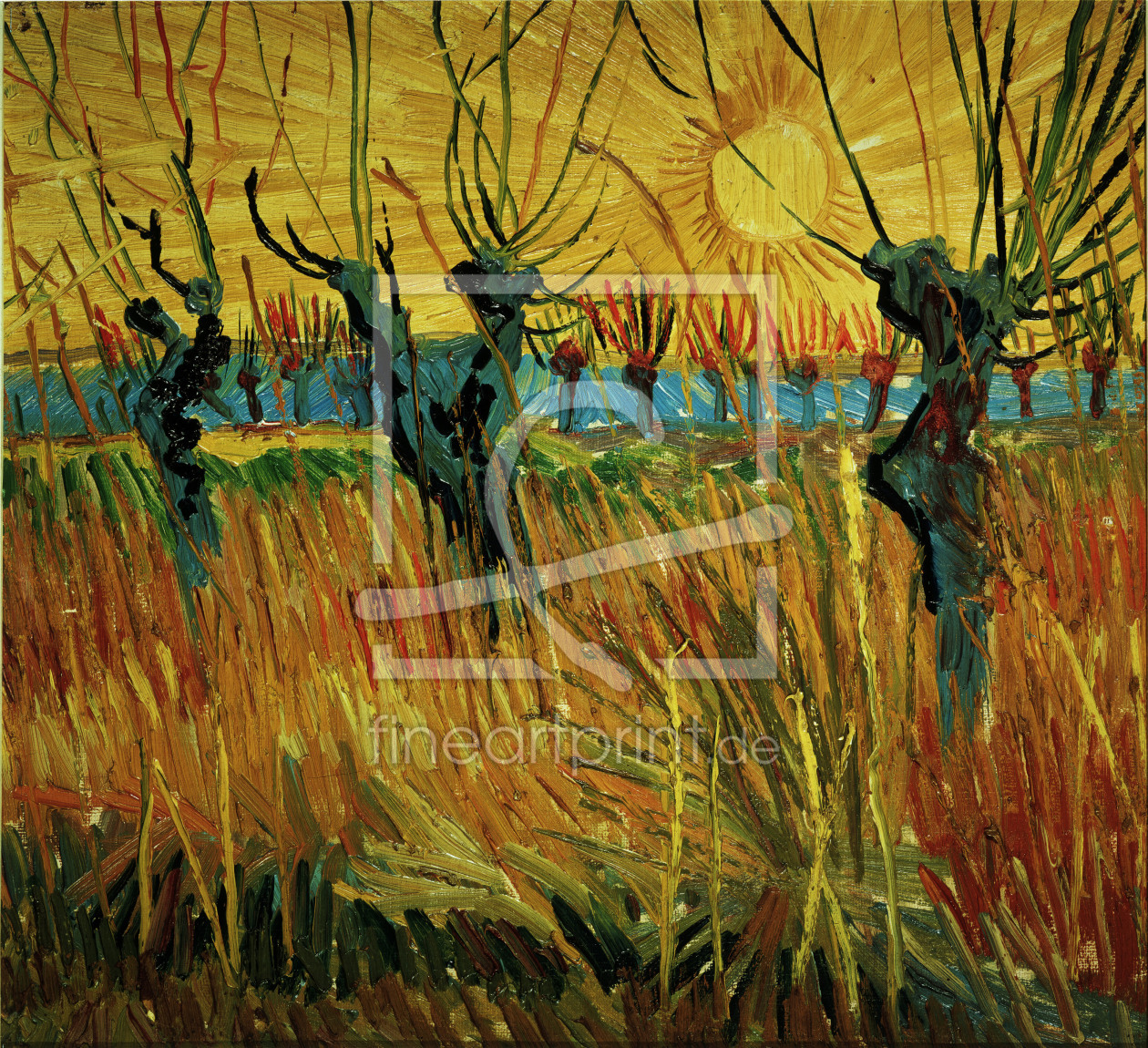 Bild-Nr.: 30002864 Van Gogh / Willows at Sunset / 1888 erstellt von van Gogh, Vincent