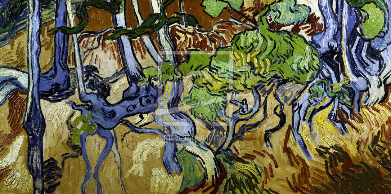 Bild-Nr.: 30003294 V.v.Gogh / Tree roots and tree trunks erstellt von van Gogh, Vincent
