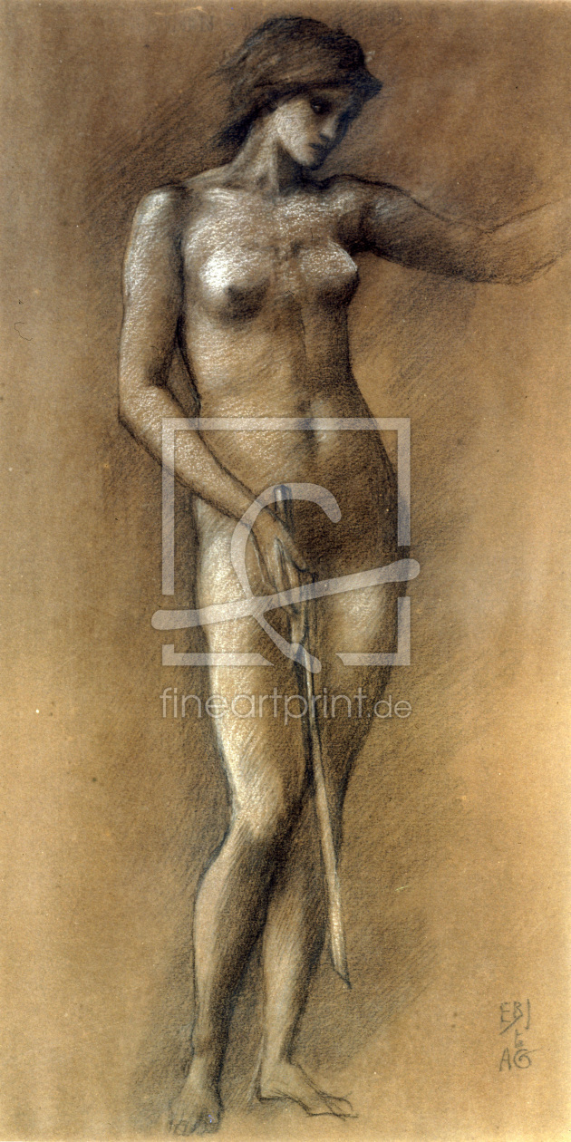 Bild-Nr.: 30009058 E.Burne-Jones / Life Drawing / Minerva erstellt von Burne-Jones, Edward