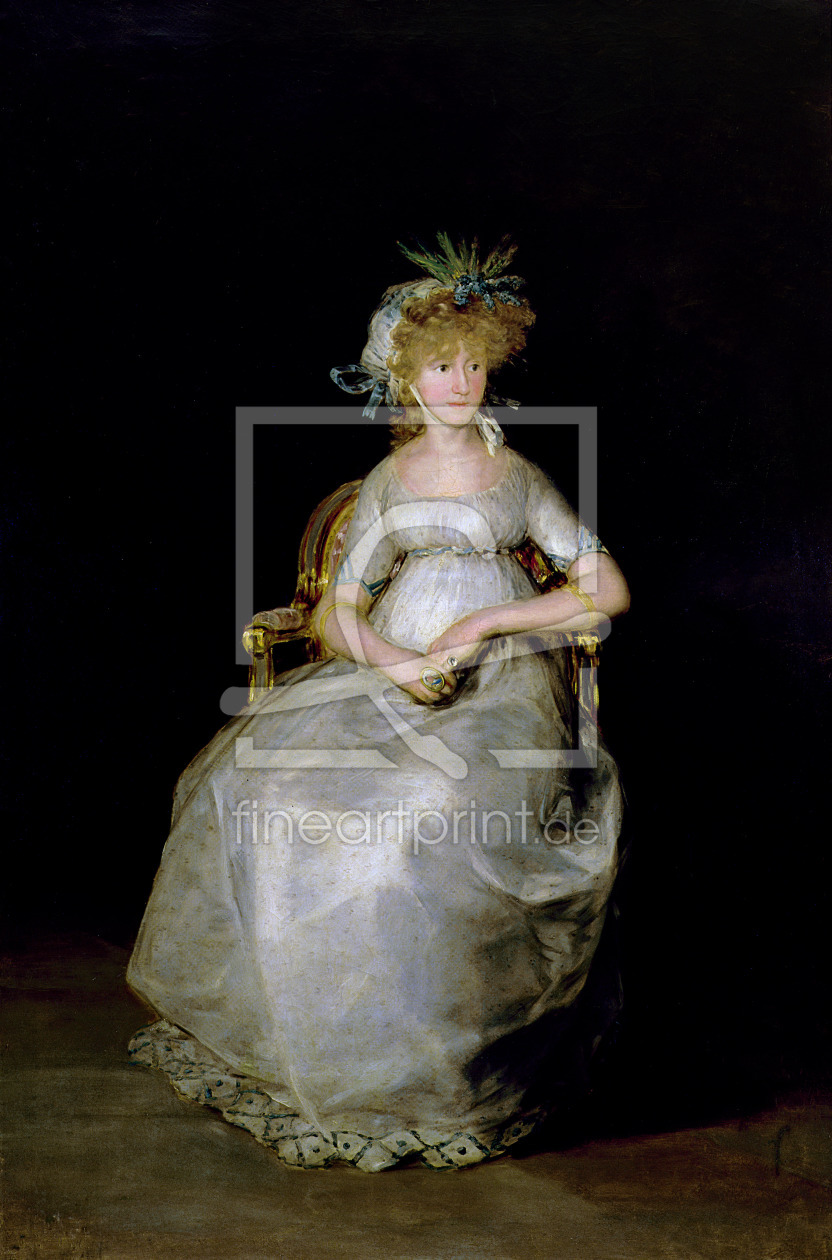 Bild-Nr.: 31000541 Portrait of Maria Teresa of Ballabriga, Countess of Chinchon erstellt von Goya, Francisco de
