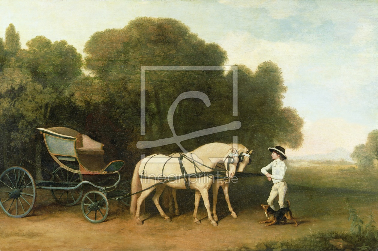 Bild-Nr.: 31001437 A Phaeton with a Pair of Cream Ponies in the Charge of a Stable-Lad, c.1780-5 erstellt von Stubbs, George