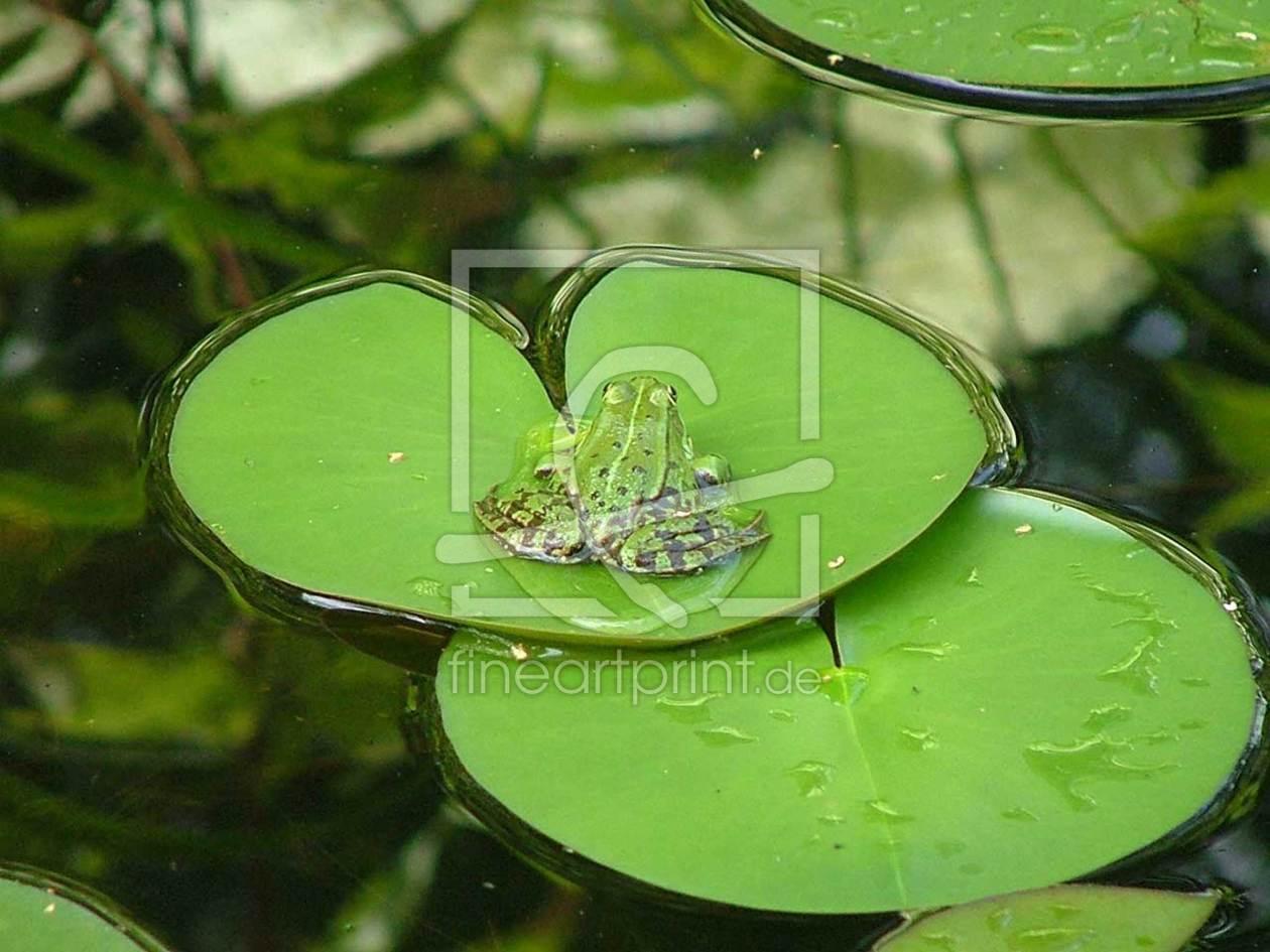 frosch auf seerosenblatt als untersetzer von viruswrit