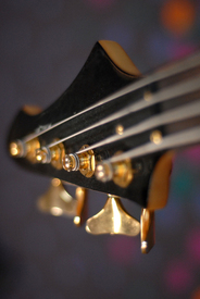 bass strings/9712826