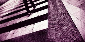 ZEBRA | crossing/9901834
