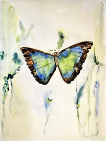 Butterfly - Aquarell/9946621