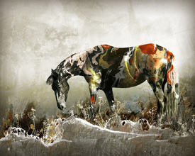 Art Painted Horse/10270539