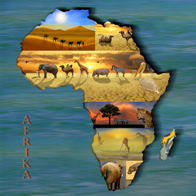 Kontinent Afrika Collage/10329095