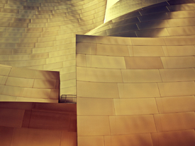 Walt Disney Concert Hall/10664074