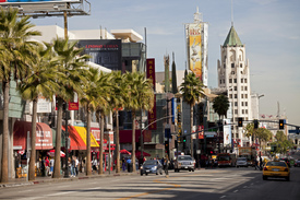 Hollywood Boulevard/11169750