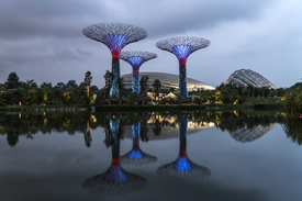 Bild-Nr: 11646136 Super Trees, Gardens by the Bay, Singapur, Asien Erstellt von: connys-traumreisen