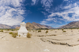 Nubra Valley/12084926
