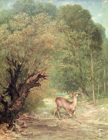 Bild-Nr: 31000313 The Hunted Roe-Deer on the alert, Spring, 1867 Erstellt von: Courbet, Gustave
