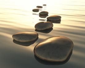 step stones/9865852