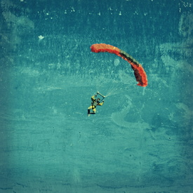 skydiver/10199193