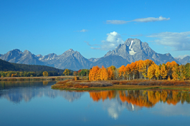 Fall foliage at Oxbow Bend/10478308