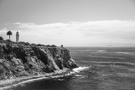 Point Vicente Lighthouse/11573562
