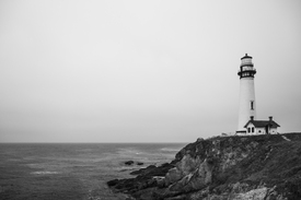 Pigeon Point Lighthouse/11579442