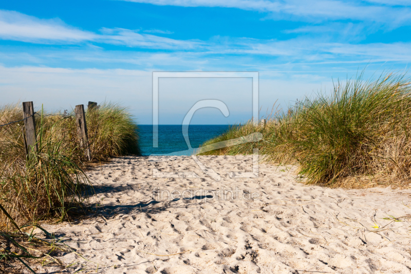 ostsee strandweg bei ahrenshoop als leinwand von r. Black Bedroom Furniture Sets. Home Design Ideas