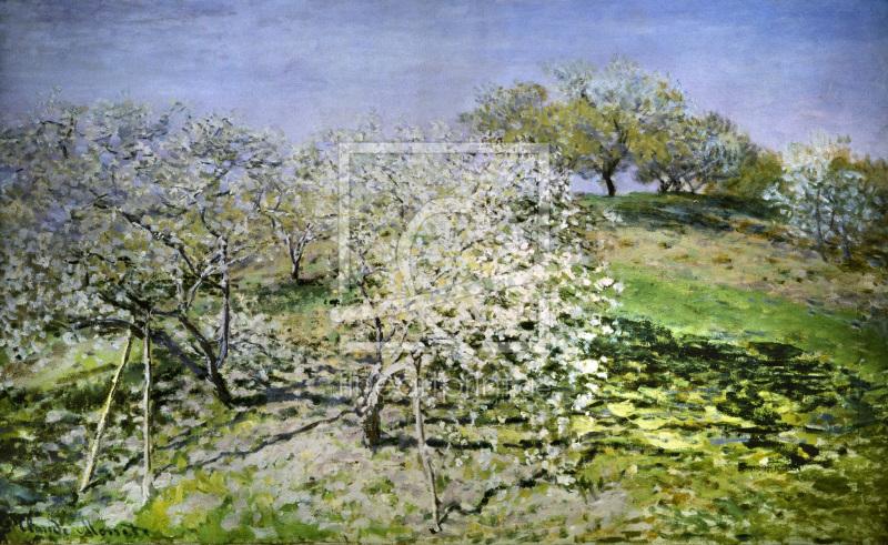 c monet spring flowering apple trees als leinwand vo. Black Bedroom Furniture Sets. Home Design Ideas