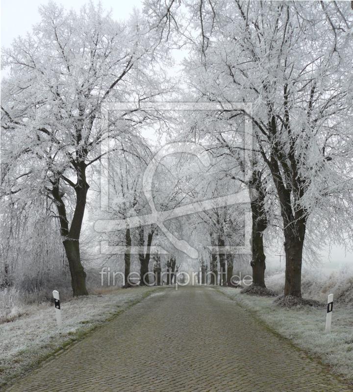 winterliche allee als glas schneidebrett von volvo1 e. Black Bedroom Furniture Sets. Home Design Ideas