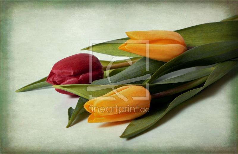 tulpen als glas schneidebrett von uwe jahn erh ltlich b. Black Bedroom Furniture Sets. Home Design Ideas