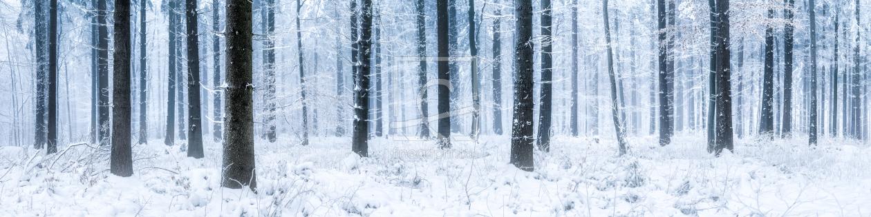 wald panorama im winter als leinwand von eyetronic. Black Bedroom Furniture Sets. Home Design Ideas