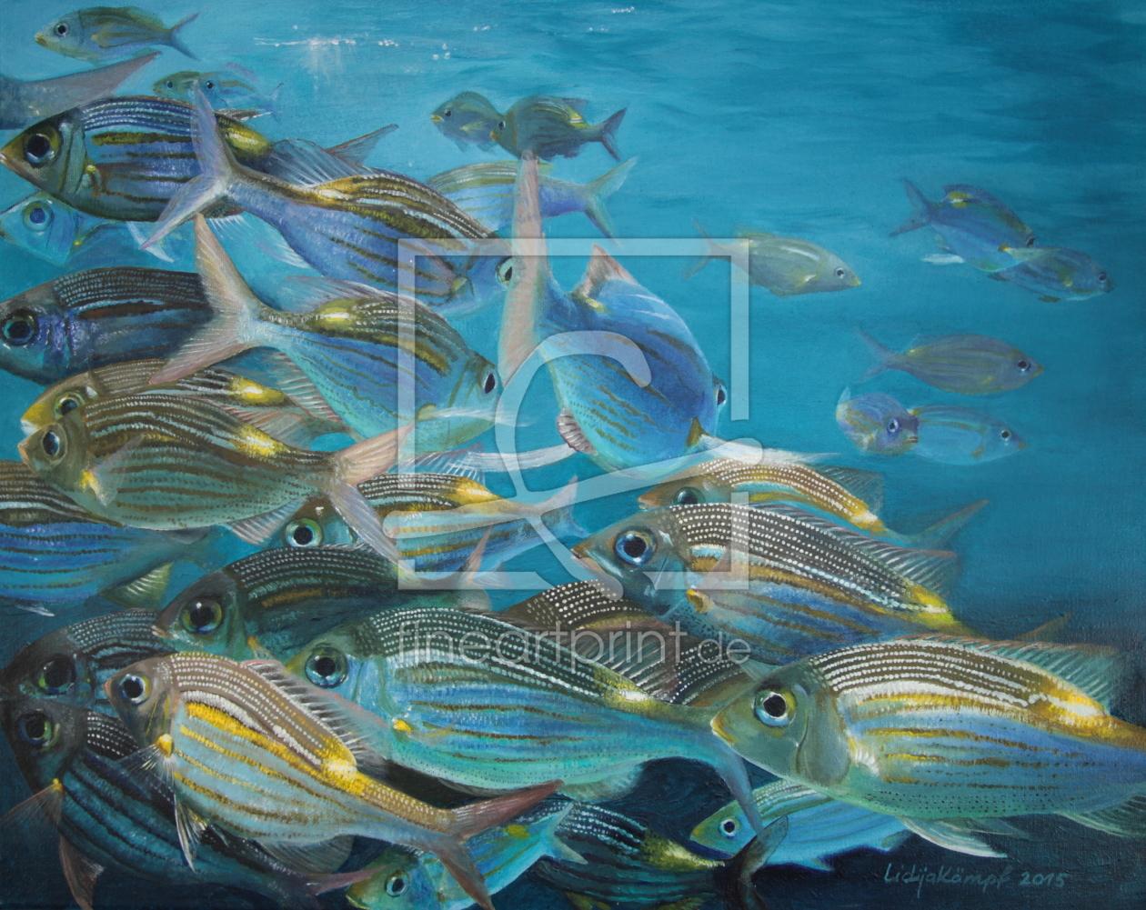 Tropische Fische as a canvas print 11698820 | Fine Art...