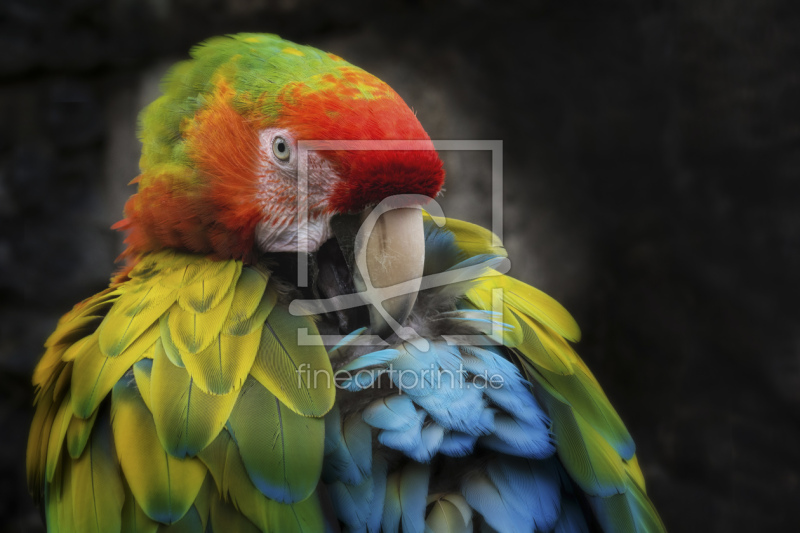 freely selectable image excerpt for your image on Pillow