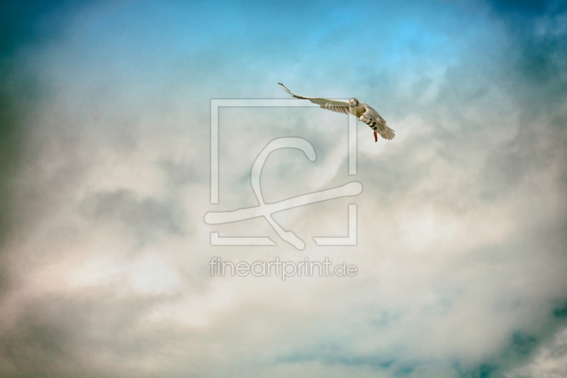 freely selectable image excerpt for your image on Slate Platter