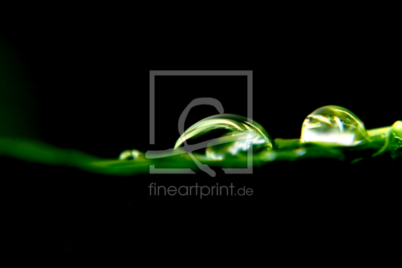 freely selectable image excerpt for your image on Window Foil